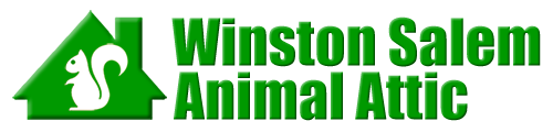 Winston Salem Animal Attic